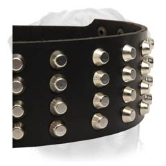 Finest leather dog collar with gorgeous studs