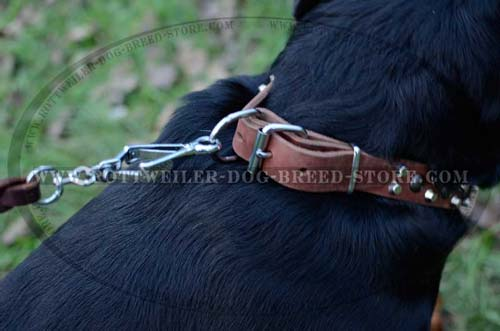Beautiful Leather Dog Collar For Rottweilers
