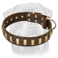 Practical leather dog collar