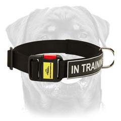 Nylon dog collar of best quality