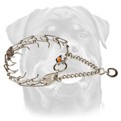 Strong Rottweiler Dog Collar for Better Behavior