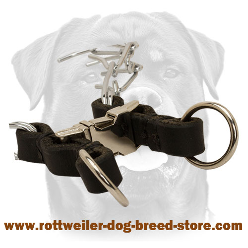 Rounded Leather Dog Collar Quick Release Buckle