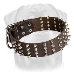 Leather collar for Rottweiler decorated     with spikes