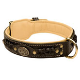 Royal Nappa Padded Hand Made Leather dog collar for Rottweiler
