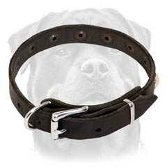 Dependable leather dog collar easy-to-adjust properly fitting