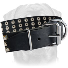 Non-corrodible buckle and D-ring for leash and tags