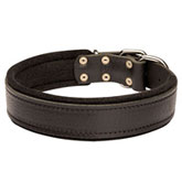 dog collar padded with thick felt for maximum dog comfort