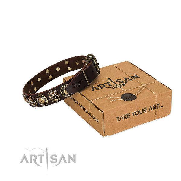 Adorned full grain leather dog collar for stylish walking