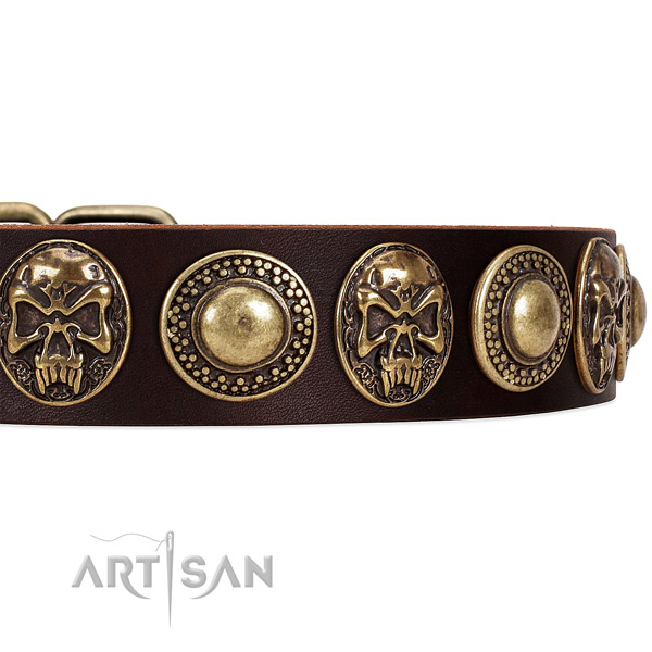 Full grain natural leather dog collar with adornments for daily use