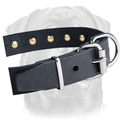 Buckle and D-ring for leash and tags - nickel-plated hardware