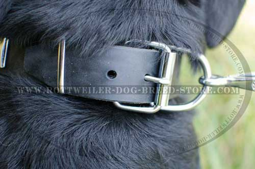 Built-in D-Ring for Leash Fastening
