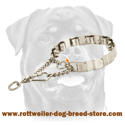 Prong Neck Tech Rottweiler Collar Metal with 2 O-Rings for Lead