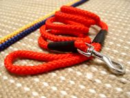 Cord nylon dog leash - dog lead for walking training