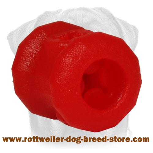 Good Chew Proof Dog Collar