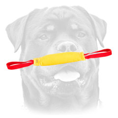 Durable     Training Bite Tug for Rotty of French Linen