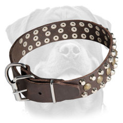 Rottweiler collar with rust-proof fittings