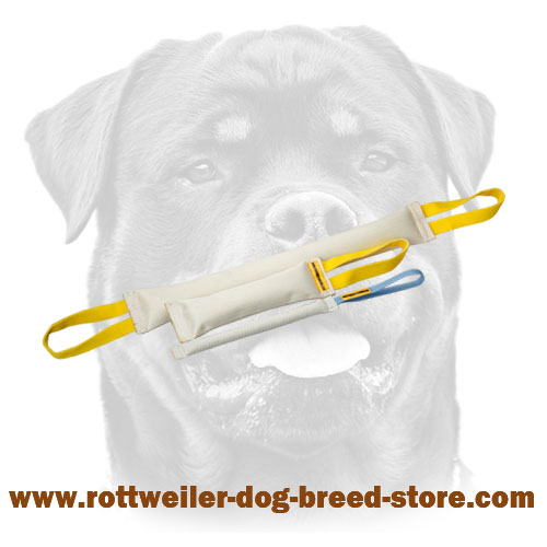 Durable stitched fire hose bite tugs for rottweiler