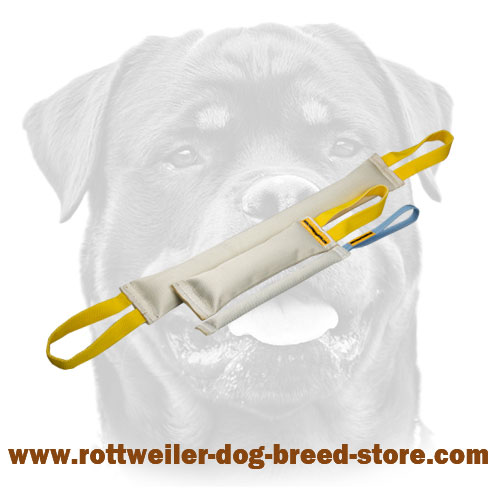 Rottweiler Training supplies bite tugs set made fire hose