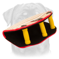 Rottweiler puppy bite builder of jute with 3 padded handles