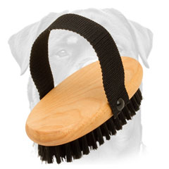 Rottweiler bristle brush with nylon handle