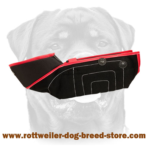 Extra Strong Protection Bite Rottweiler Sleeve - Safest Training Rottweiler Equipment