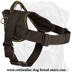 Lightweight remarkable nylon dog harness