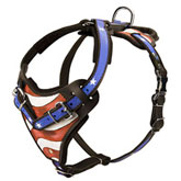 USA pride Harness for Rottweiler