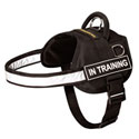 Nylon Rottweiler Dog Harnesses