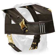 Rottweiler Leather Harness Of Original Design