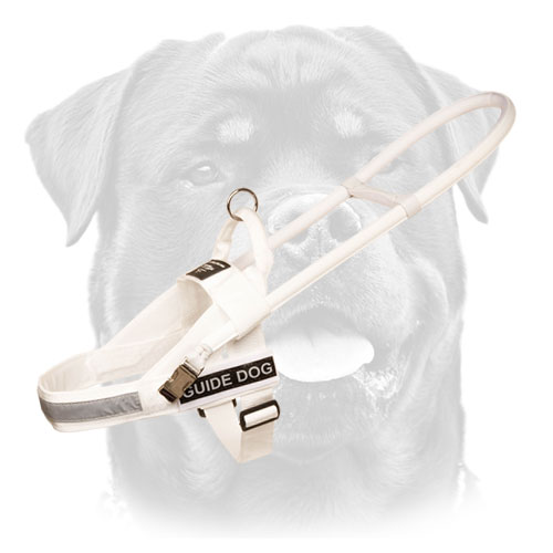 Rottweiler Nylon White Walking Harness