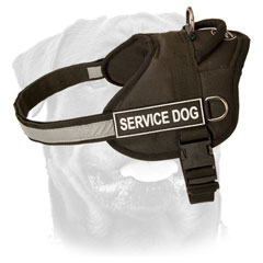 Durable Rottweiler Harness 