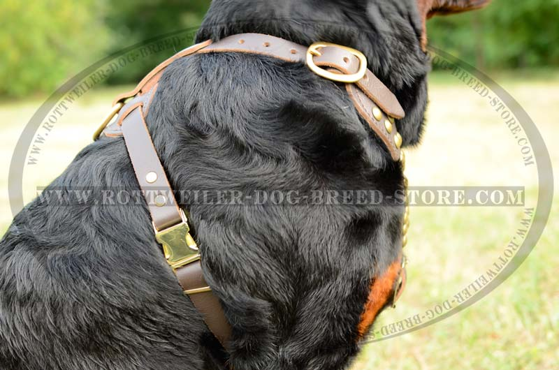 Rottweiler Studded Leather Chic Regulable Fancy Dog harness big luxury studded walking dog harness rottweiler leather worthy