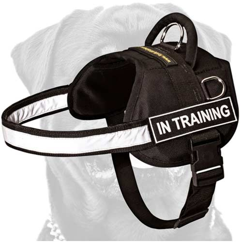 Light-weight walking premium nylon dog harness
