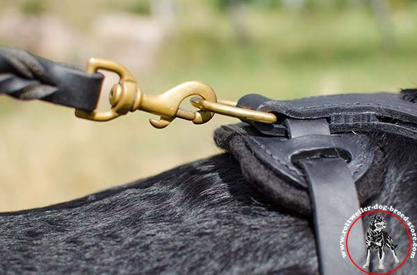 Rottweiler harness with durable snap hook