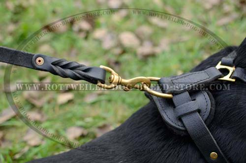 Fashion Leather Dog Harness