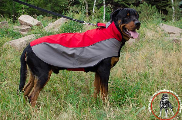 Extra warm Rottweiler nylon coat