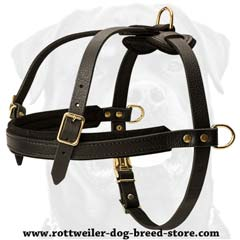 Multipurpose adjustable leather dog harness