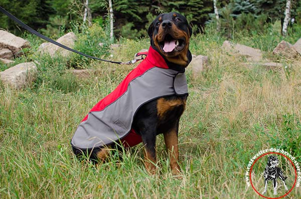 Waterproof Rottweiler winter coat