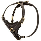 Exclusive Luxury Handcrafted Padded Leather Dog Harness for Rottweiler