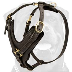 Top quality handmade dog harness