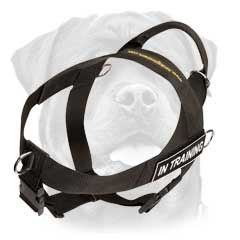 Well-made lightweight nylon dog harness