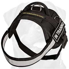 Durable long-lasting training nylon harness