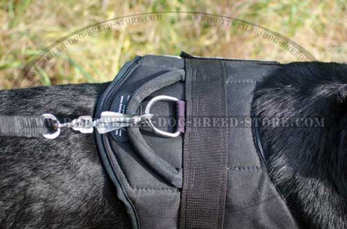 Extended D-Ring Cannot Be Easily Broken Because of Leash Pulling