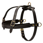 Tracking / Pulling / Agitation Leather Harness