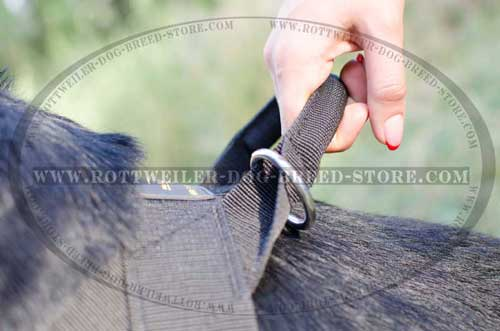 Heavy-Duty Upper Control Handle for Easy Mananagement of Your Dog