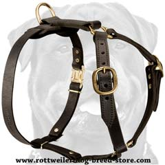 Easy-to-use professional leather dog harness