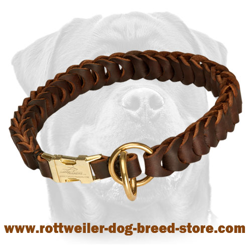 Braded Leather Dog Collar for Training and Behavior Correction