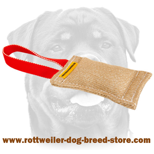 Rottweiler Jute Puppy Bite Tug with One Handle