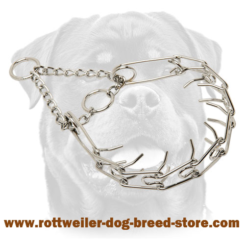 "Chrome plated ""Toothy tamer"" dog pinch collar - 1/6 inch (3.99 mm)"