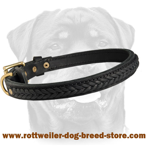 Gorgeous Leather Collar for Rottweilers - Decorated Walking Dog Collar